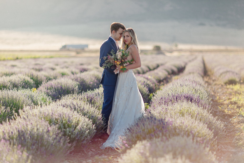 blue suit lavender field wedding photos